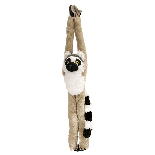 RING TAIL LEMUR HANGING